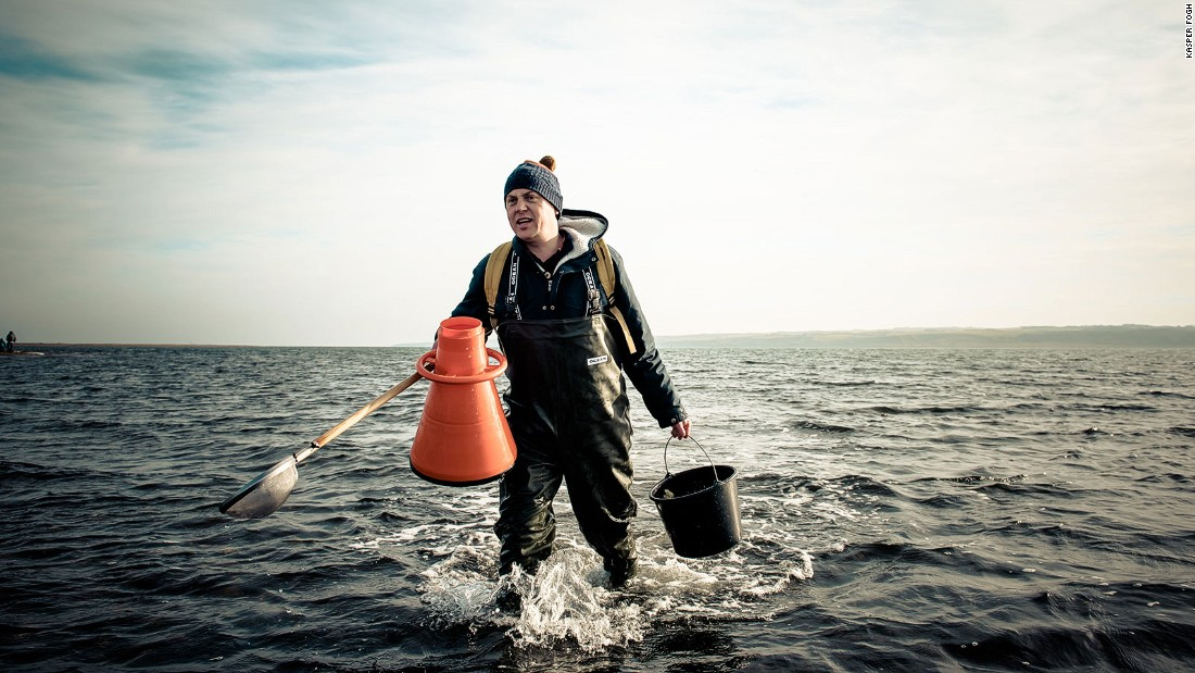 Most fishing boats operating in the area export their catch to southern Europe, but oyster safaris in the water off the windswept beach at Gjellerodde use orange underwater viewers to track down the shellfish.