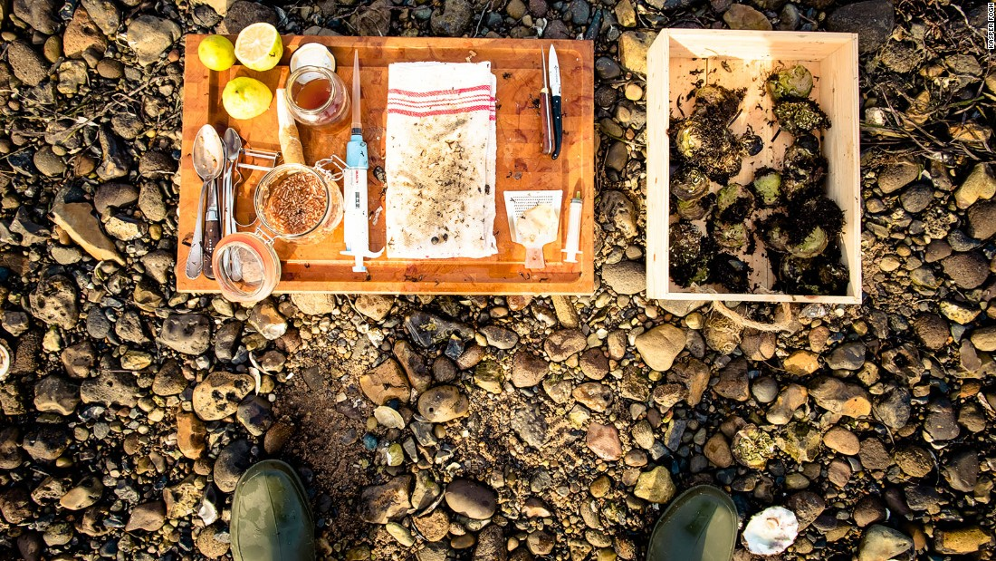 One Limfjord oyster can cost as much as 60 Danish kroner ($8.85) in a Copenhagen restaurant.
