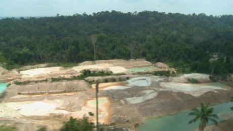 cnnee pkg baron combating deforestation_00002213