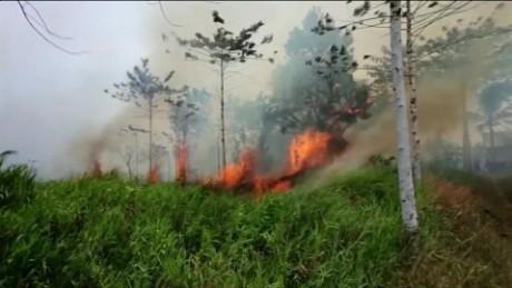 indonesia palm oil molko pkg_00000115.jpg