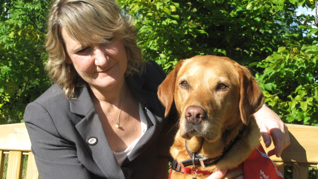 "Claire Guest is the CEO of Medical Detection Dogs, a company that trains dogs to sniff out cancer. Her fox red Labrador, Daisy, caught her breast cancer six years ago when she was 45. ""She kept staring at me and lunging into my chest. It led me to find a lump,"" Guest remembers."