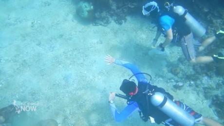phillipine coral reef conservation stevens pkg_00020516