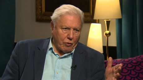 David Attenborough  Naturalist and broadcasting legend