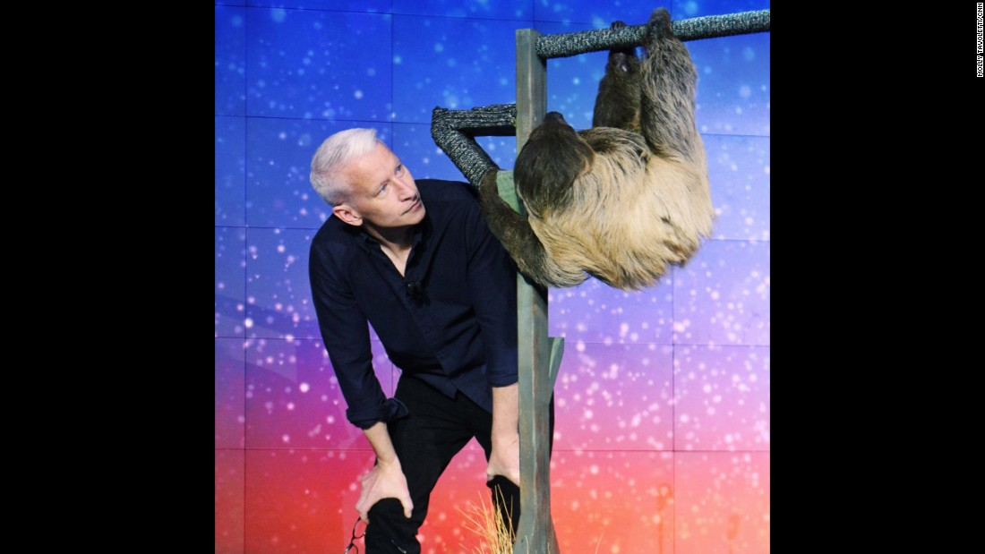Host Anderson Cooper with a sloth named Snooki, an animal ambassador from the LEO Zoological Conservation Center.<br />Snooki was there to help honor Top 10 Hero Monique Pool, who rescues, rehabilitates and releases sloths back to the rainforest in Suriname.