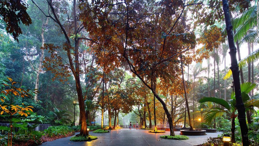 singapore botanic garden unesco s only tropical garden cnn