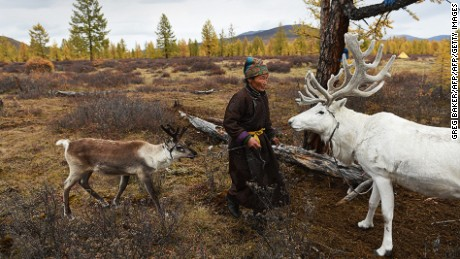 TO GO WITH: Mongolia-environment-rights-animal-lifestyle by Khaliun Bayartsogt