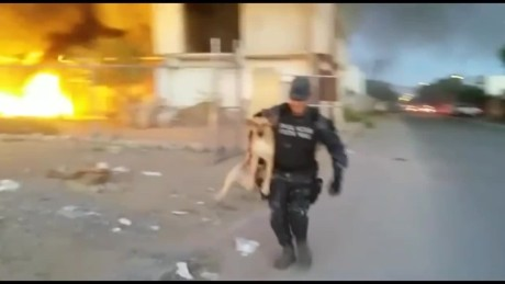 cnnee vo rec mexican police saves a dog from a fire_00002513