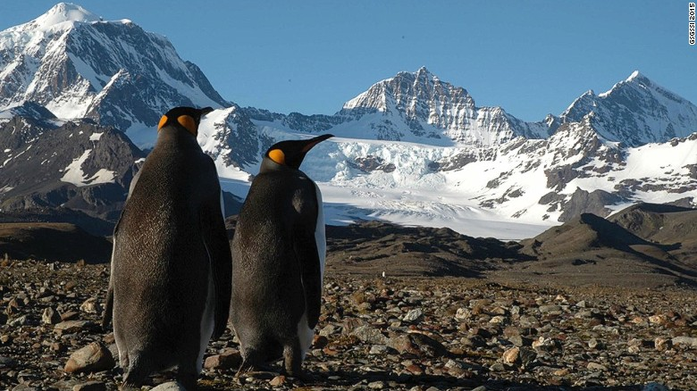 Located in the south Atlantic, South Georgia Island is a stopover on many Antarctica expeditions. Its tundra is filled with colonies of thousands of noisy king penguins.