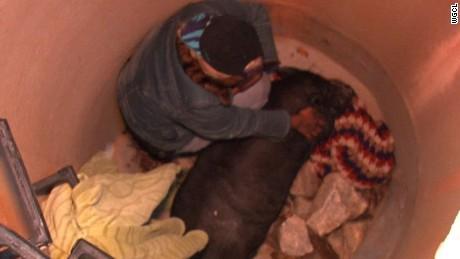 cnnee rec vo pig rescue atlanta_00000904