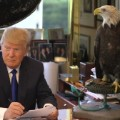Donald Trump Eagle