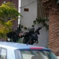 05 tel aviv shooting 0101