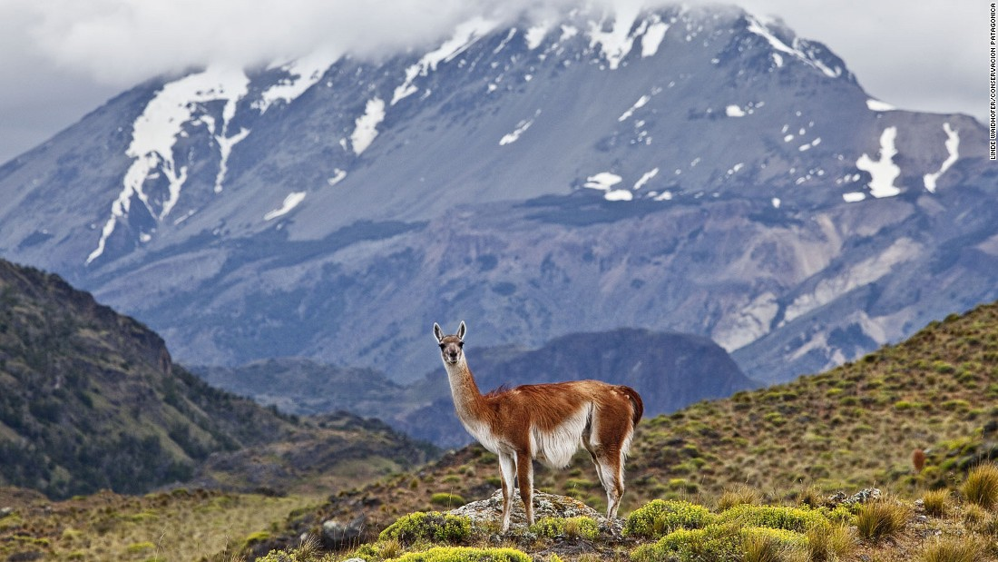 "Among 2016 events that might change your travel plans is the possible granting of national park status to this<a href=""http://www.conservacionpatagonica.org/home.htm"" target=""_blank""> spectacular wilderness</a> next to Chile's Argentine border."