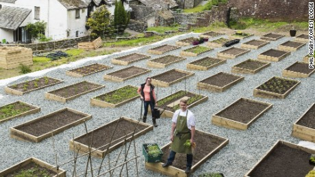 Head chef Kevin Tickle and head gardener Catherine Walsh among the Forest Side's raised beds.