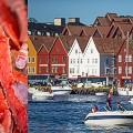 (2) Bergen