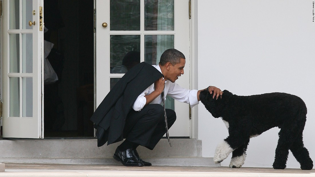 Obama pets Bo outside the Oval Office on March 15, 2012.