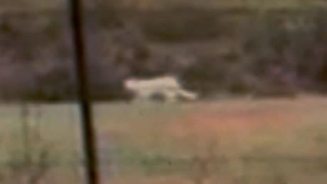 big cat sighting texas dnt _00000404.jpg
