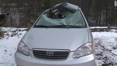 Bizarre Crash Deer Back Seat Car pkg_00003617