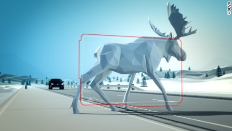 Volvo has created a system that can detect when a big animal is walking in front of your car.