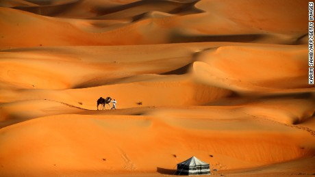 A man walks his camels across the Liwa desert, west of the Gulf emirate of Abu Dhabi.