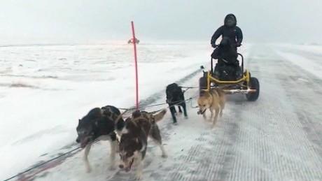 norway arctic circle dog sledding damon backstory lklv_00001810.jpg