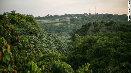 Uganda's Zika Forest, birthplace of the Zika virus
