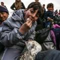 13 syria aleppo refugees 0206