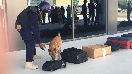 Explosives detection dogs screen passengers' luggage at the Mogadishu international airport.