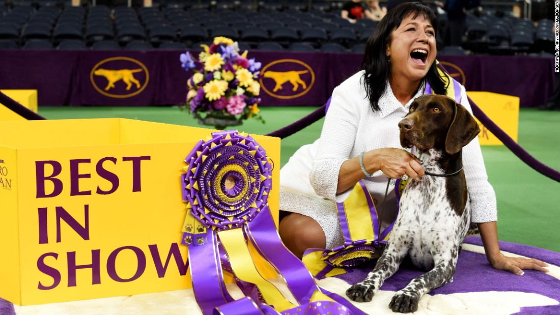 Dog Show Prize Money In India