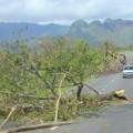 fiji cyclone 8