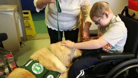 animal therapy vital signs spc a_00034921.jpg
