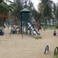 03.syria.masri.0227.IMG_6225