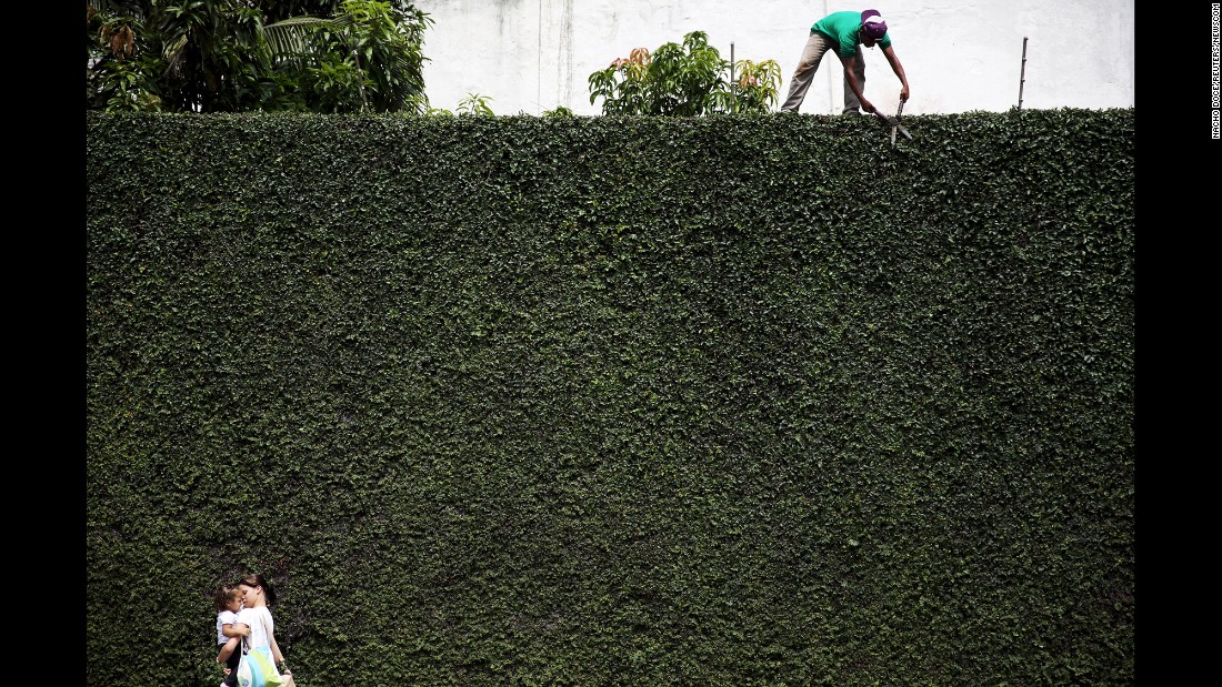 A worker trims a hedge in Sao Paulo. The city's largest park is Parque do Ibirapuera, home to a museum of modern art and a museum of Brazil's African history.
