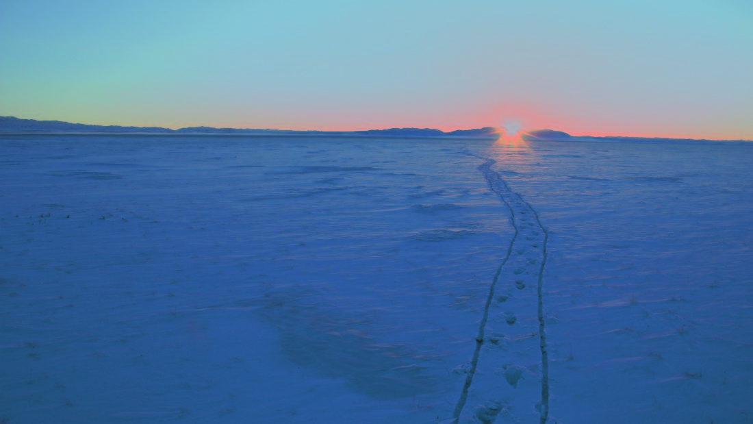 It took her three attempts to cross Mongolia's inhospitable South Gobi, where temperatures drop to minus 30 C (-22F)