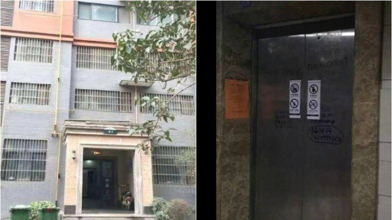 Woman's body found in elevator