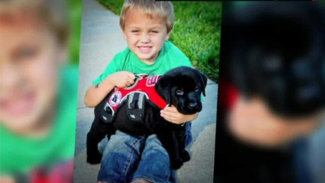 Dog trained to detect sugar levels saves boy's life