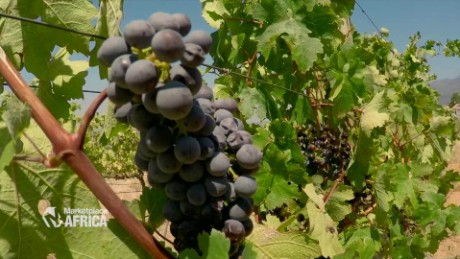 South Africa's wine industry is exploring new markets