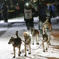 01 Iditarod race 2016