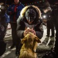 02 Iditarod race 2016