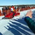 06 Iditarod race 2016