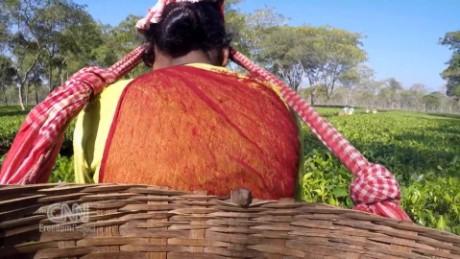 cfp selling girls from tea plantations india spc_00002804.jpg