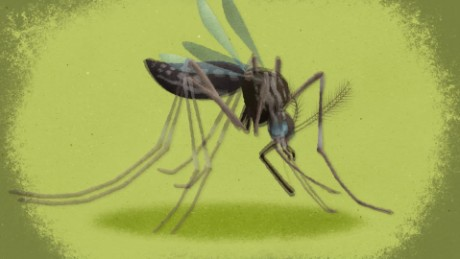 zika animation dr. sanjay gupta ts orig_00002205