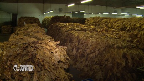 marketplace africa zimbabwe tobacco industry spc a_00011307