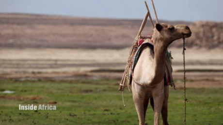 inside africa the afar of djibouti spc b_00061302.jpg