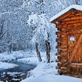 Log-outhouse,-Chena-Hot-Springs-Resort,-Alaska,-USA