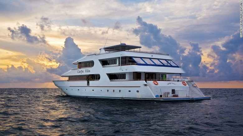 Liveaboard diving experiences allow easy access to ocean exploration. Among the best luxury options is the 125-foot Carpe Vita, which sails around the Maldives.