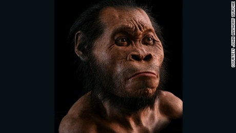 Reconstruction of Homo naledi by John Anthony Gurche.