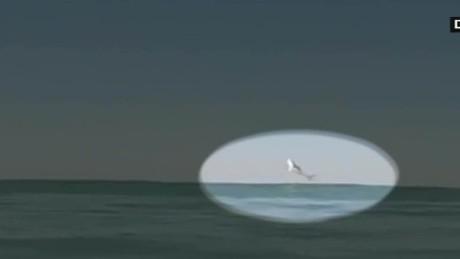 cnnee vo tiburon volador salta video _00001008