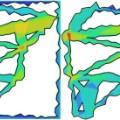 Science Visual Heat Map