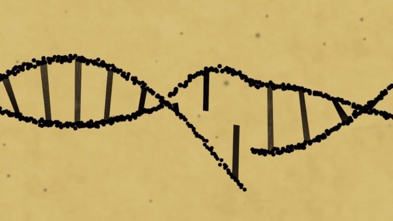 Gene-editing technology shows promise against herpes - CNN.com