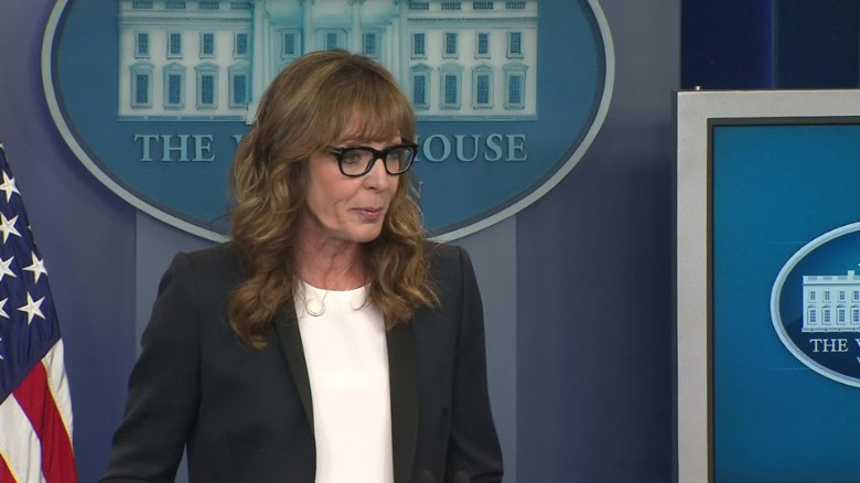 allison janney west wing opioid epidemic white house briefing sot_00001113